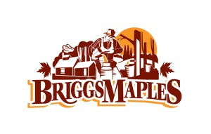 briggs_logo