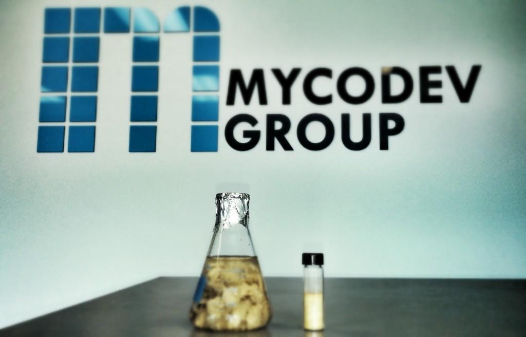 Mycodev-Cover-1024x656