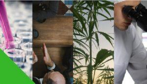 Cannabis Connect @ Wu Centre